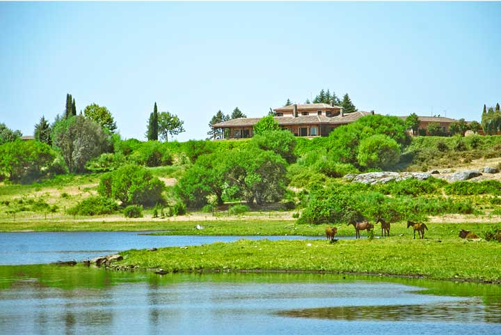 Estates and villas in spain to rent