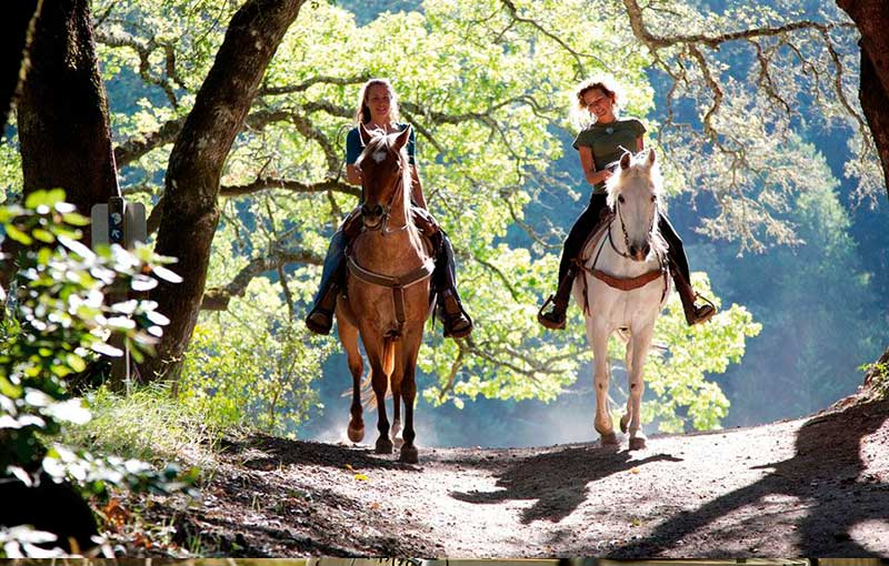 Horse-Riding at holidays in spain